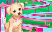 小狗狗水上滑滑梯